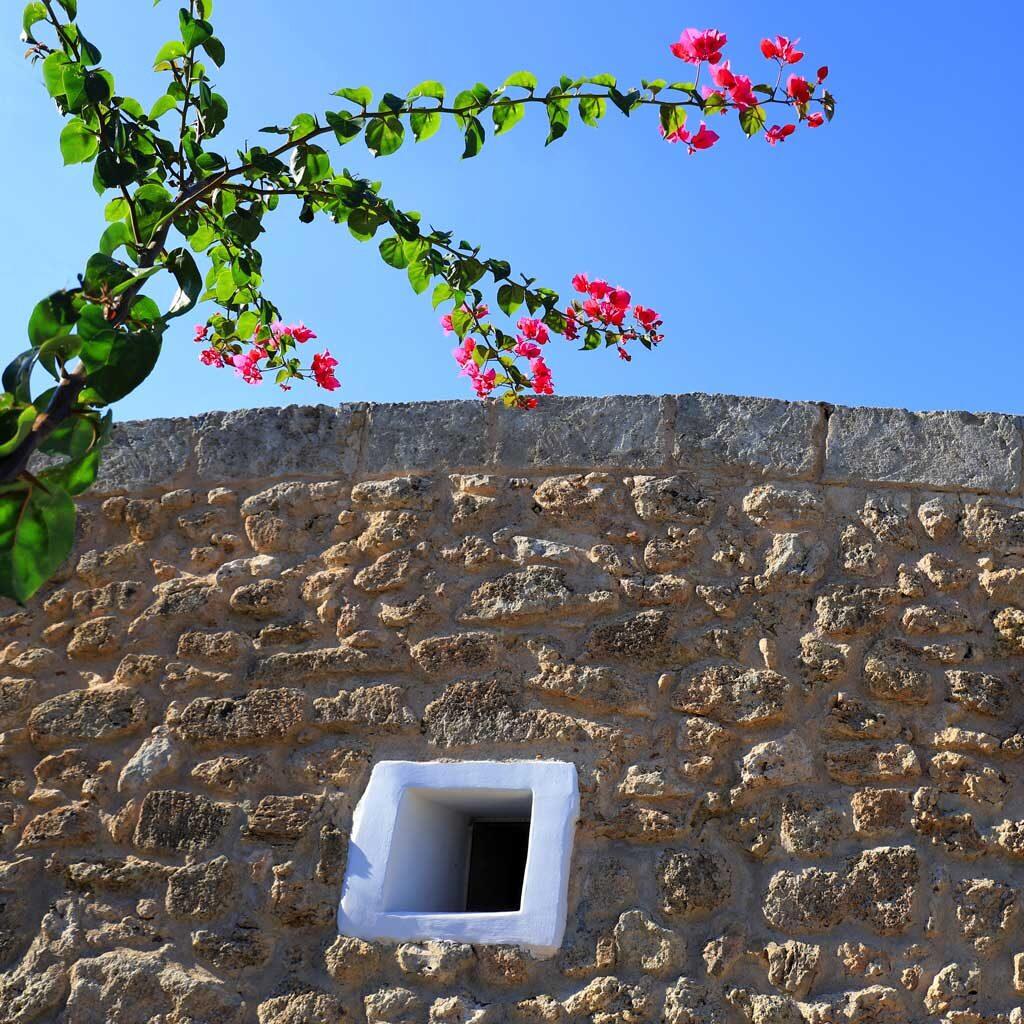 Agriturismo Presicce Puglia